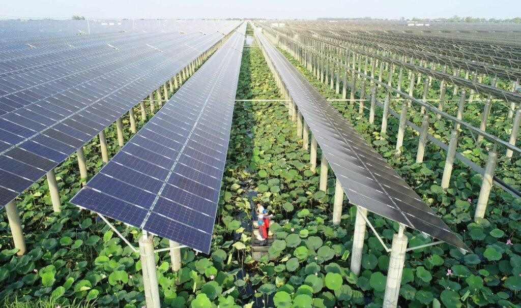 Цената на слънчевата енергия в Китай се изравни с въглищната