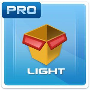 Microinvest Склад Pro Light 3.07.073
